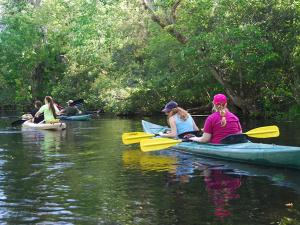Exploring Florida Habitats on Spring Break