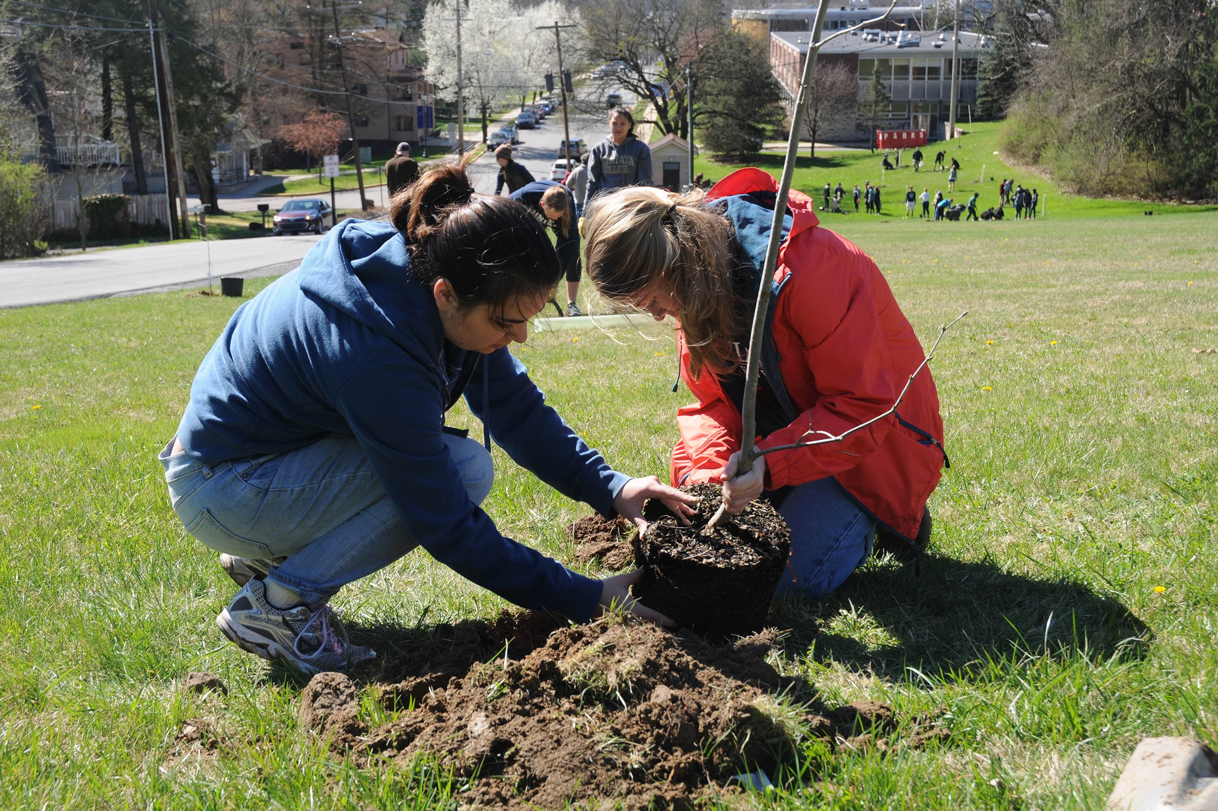 Volunteers plant 250 trees on Earth Day to celebrate the 250th anniversary of Huntingdon.
