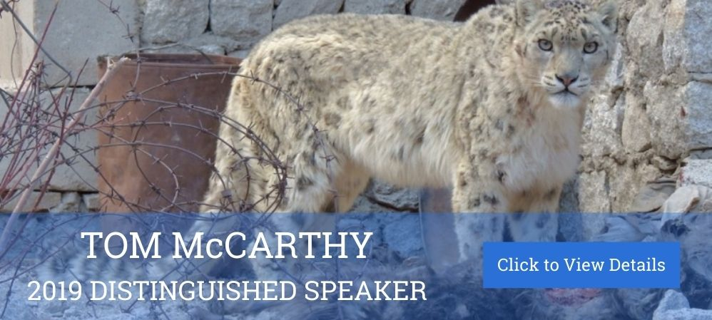 Snow Leopard Images from McCarthy Talk